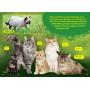 Lasten eläinkirja - Sammakkoeläimet ja matelijat