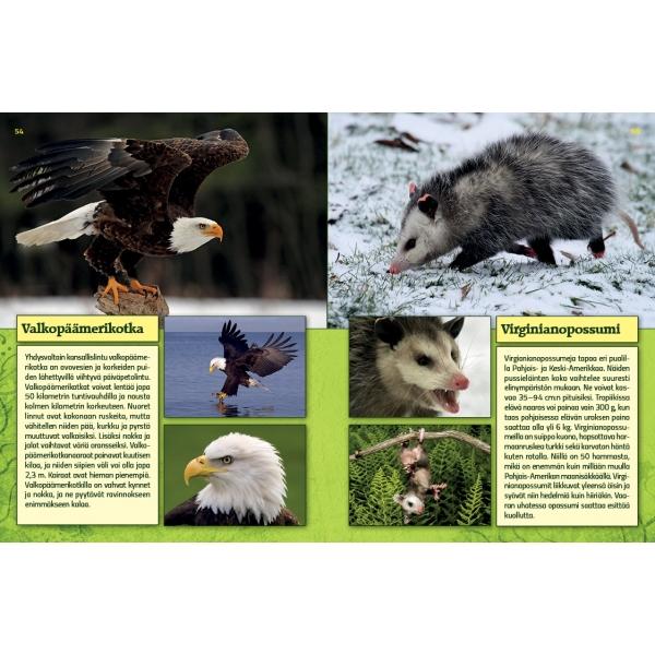 Eläinten